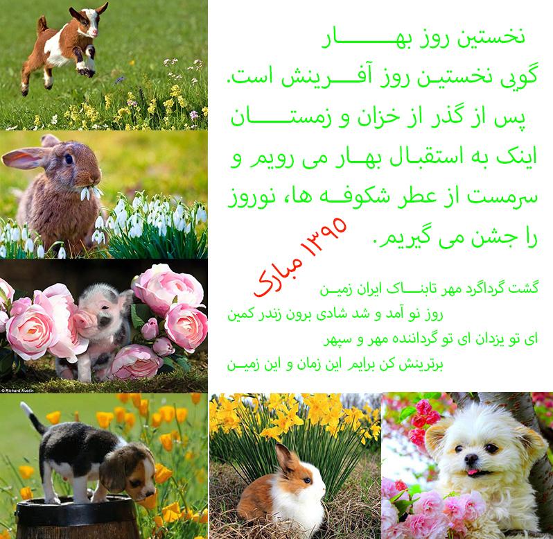 [تصویر:  1458370858.jpg]