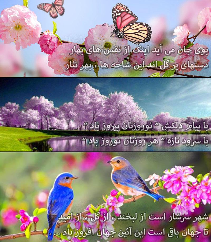 [تصویر:  1490154906.jpg]